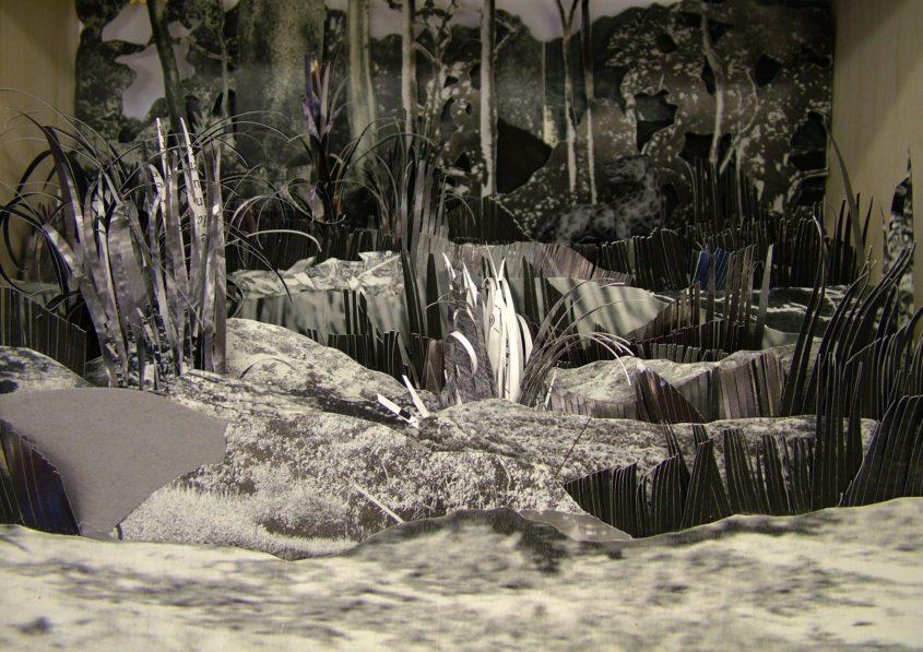 surprise! infrared reveals black leopards hidden spots marina sztefanu art artist box contemporary art budapest hungary